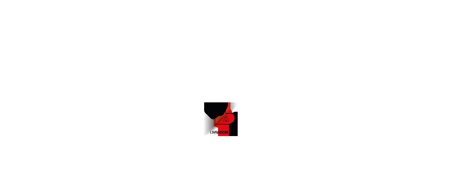 Isca - développement informatique - livraison et mise en production