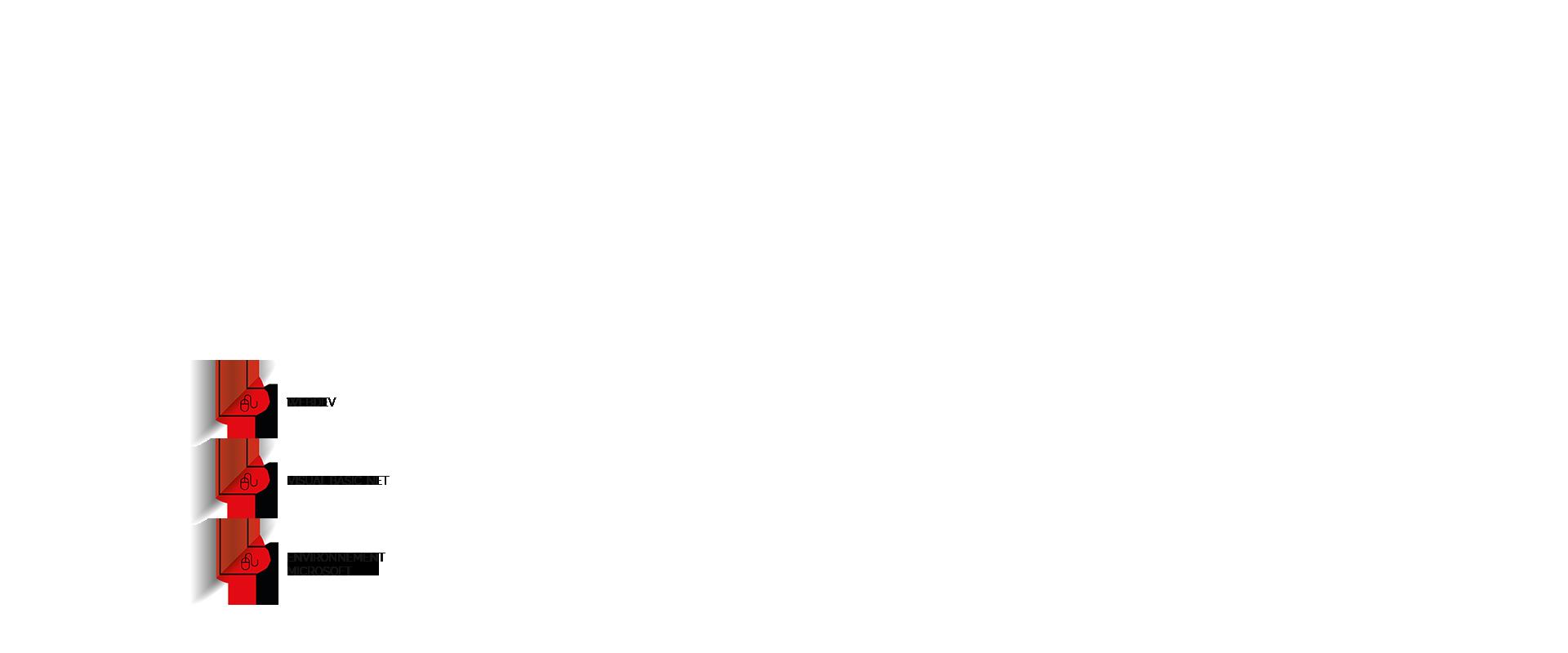 ISCA - développement spécifique en webdev .net